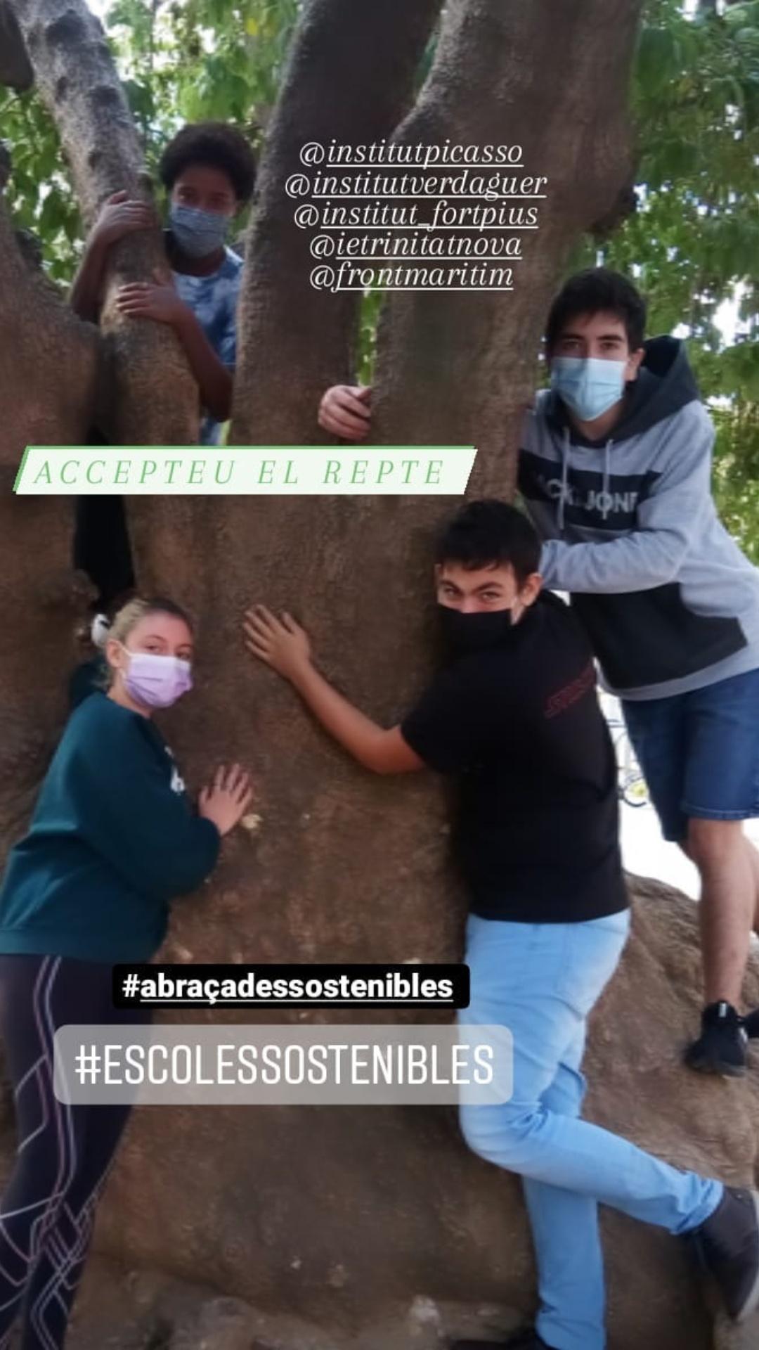 Repte 1: Abraçada sostenible